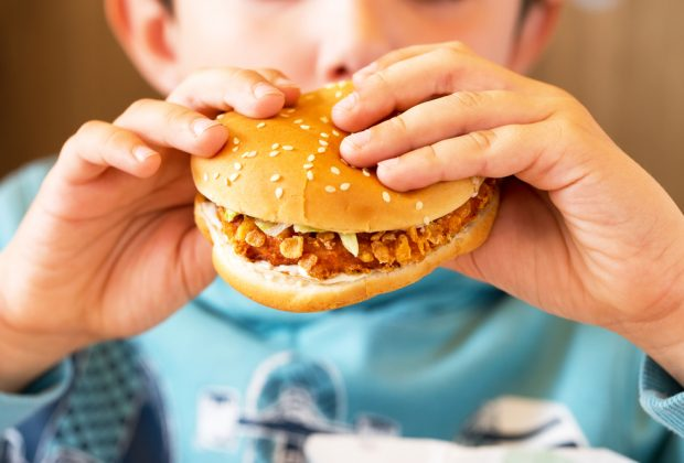 Burger eaten by young boy