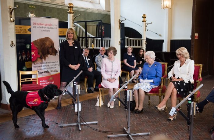Medical Detection Dogs at Buckingham Palace
