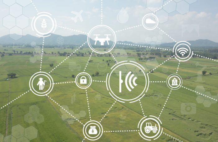 Digital food supply chain