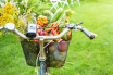 Bicycle basket filled with colourful fruit and veg- Pinkyone via Shutterstock