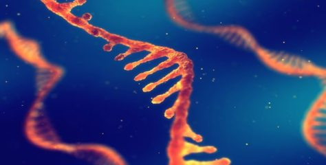 Cancer: how one type of RNA could be the future of treatment