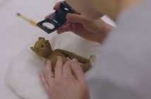 Teddy (copyright Blast! Films